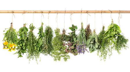 fresh herbs hanging isolated on white . basil, rosemary, sage, thyme, mint, oregano, marjoram, savory, lavender, dandelion Banque d'images