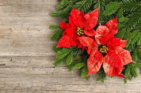 flor de pascua: �rbol de Navidad rama con flor poinsettia rojo sobre fondo de madera Foto de archivo