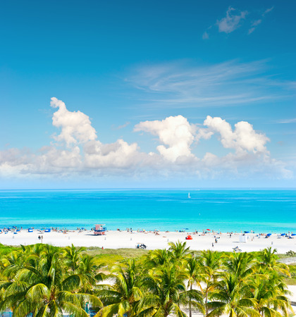 tropical beach panoramic: Landscape with blue sky, turquoise water and palm trees. Public beach in Miami Beach, Ocean Drive. Panoramic view