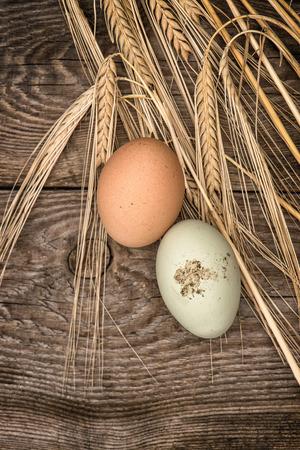 stile country: uova biologiche naturali su fondo rustico di legno. picture stile country