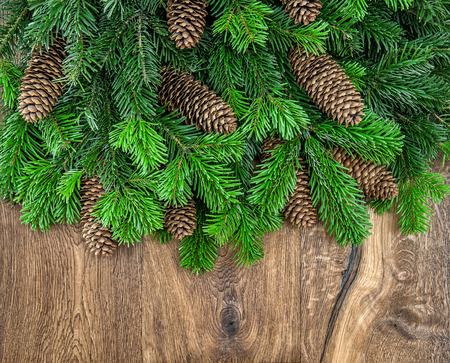 undecorated: christmas tree branches with cones on wooden background. green border from undecorated evergreen twigs