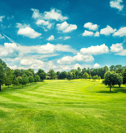 golf clubs: Golf field and blue cloudy sky. Beautiful landscape with green grass. Retro style toned picture