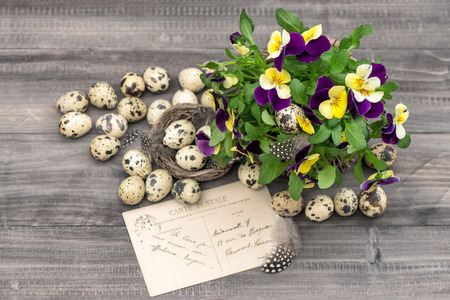 pansy flowers, quail eggs and greeting card. easter decoration photo