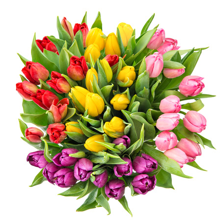 tulipan: Bukiet świeżych kwiatów wiosną tulipanów na białym tle. Widok z góry Zdjęcie Seryjne