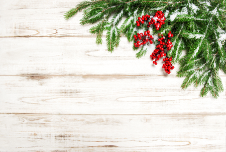 hollyberry: Christmas decoration. Evergreen tree branch with red berries on wooden background