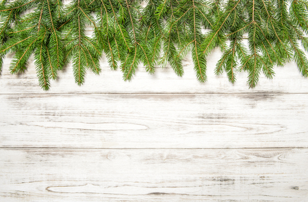 green frame: Christmas tree branches on wooden texture.