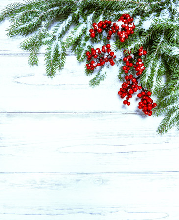 christmas decorations with white background: Christmas tree branch with red berries on wooden background.