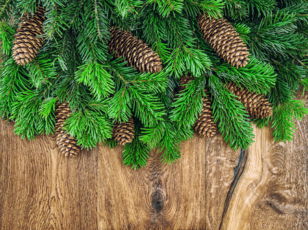 undecorated: Christmas tree branches with cones on wooden background. Undecorated evergreen twigs