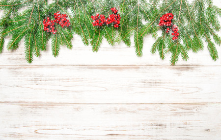 hollyberry: Christmas tree branch with red berries and falling snow. Winter holidays decoration