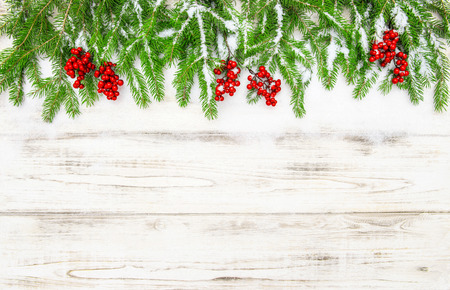 hollyberry: Christmas decoration. Evergreen tree with red berries on wooden background. Vibrant colors