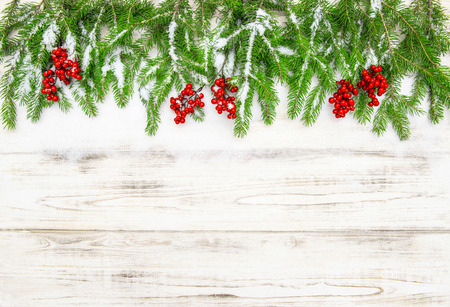 hollyberry: Christmas tree branch with red berries on wooden background. Festive decoration