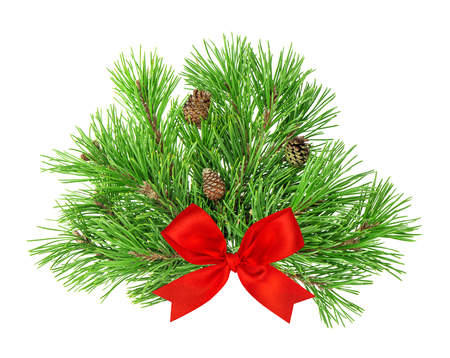 red ribbon bow: Pine tree branches with cones and red ribbon bow decoration isolated on white background Stock Photo