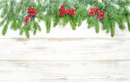 hollyberry: Christmas tree branches and red berries in snow. Winter holidays decoration. Vintage style toned picture
