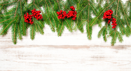 hollyberry: Fir tree twigs with red berries on bright wooden background. Holidays decoration