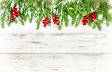 hollyberry: Christmas tree sprigs with red berries on wooden background. Winter holidays decoration