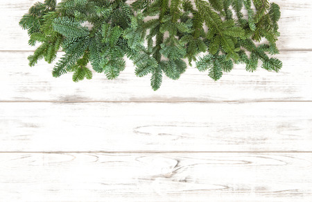 sprigs: Pine tree branches over bright wooden texture. Christmas decoration. Winter holidays background