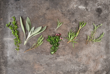 savory: Herbs rosemary, sage, thyme, savory on rustic background