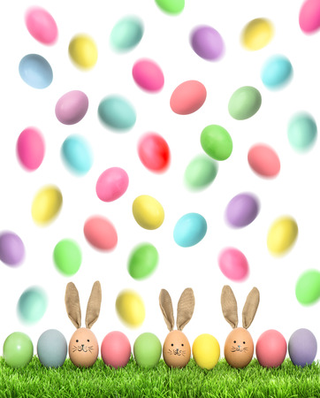 huevos de pascua: Easter eggs in green grass on white background. Colorful holidays background