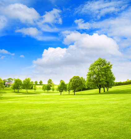 blue cloudy sky: Beautiful european landscape. Spring field with green grass, trees and cloudy blue sky. Golf course