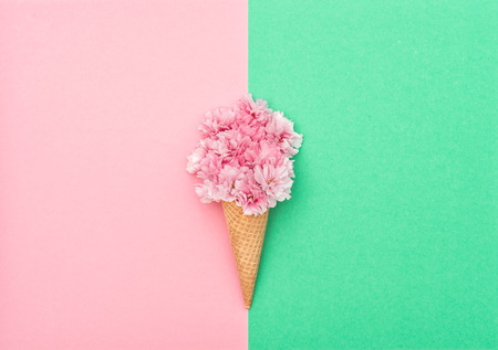 Cherry tree blossom in ice cream waffle cone on hipster colors background. Styled flat lay. Minimal concept Stock Photo