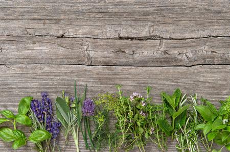 Herbes fraîches sur fond en bois. Basilic, romarin, sauge, thym, menthe, aneth, origan, marjolaine, sarriette, lavande Banque d'images - 64468248