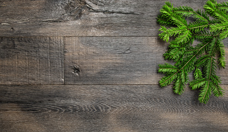 evergreen: Christmas tree branches on wooden texture. Retro style holidays background
