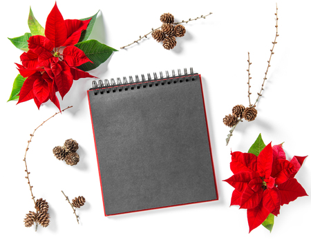 Red Christmas flower Poinsettia and empty book cover. Floral Flat lay background with pine cones Stock Photo