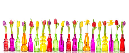 Tulips and daffodil flowers in glass bottles on white background. Colorful spring decoration Stock Photo
