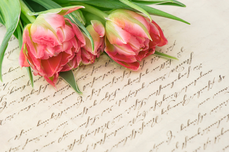 Pink tulips with old handwritten love letter. Vintage background with flowers and papers