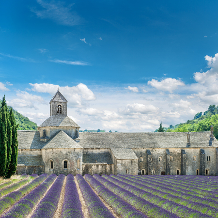 Lavender field in Provence France. Beautiful landscape with medieval castle and cloudy blue sky