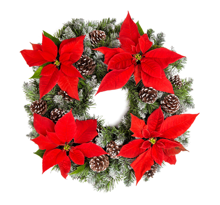 Christmas wreath with red poinsettia flowers isolated on white background Stock Photo