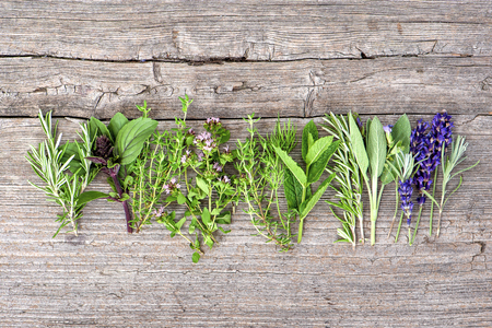 Fresh herbs. Food background. Basil, rosemary, mint, sage, thyme, oregano, marjoram, savory, lavender Stock Photo