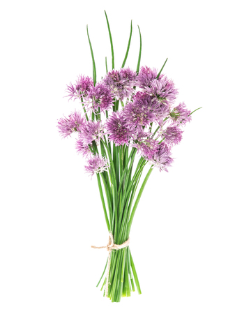 Chives leaves with flowers isolated on white background Foto de archivo