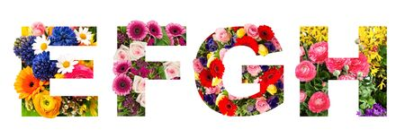 Floral lettering. Alphabet E, F, G, H from flower heads bouquet isolated on white background