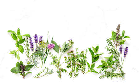 Fresh herbs on marble stone background. Basil, say, thyme, rosemary, mint, dill, savory, chive, lavender