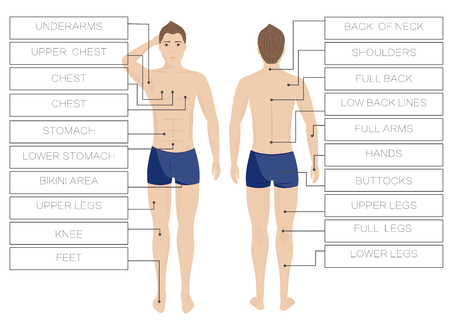 Laser hair removal male zones. Area body depilation Men. Front and back Stock Illustratie