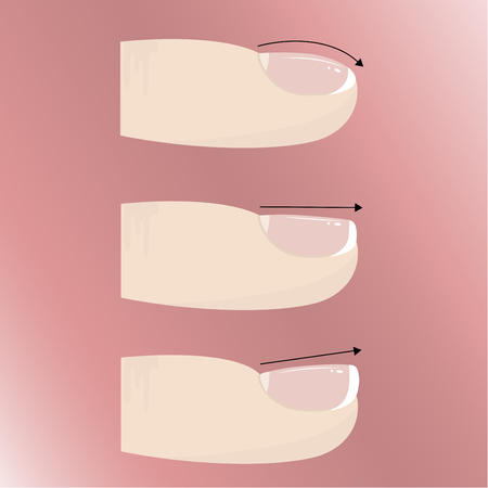 Varieties of different forms and types of nail plate. Manicure and nail extensions