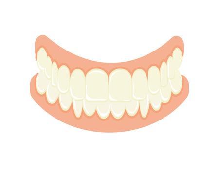 Set of false teeth. Illustration