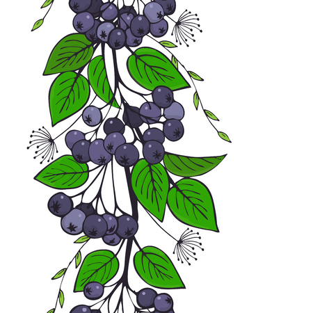 seamless ornament of black ashberry. branch of aronia pattern. vector