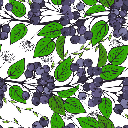 seamless pattern with branches of chokeberry. ornament of bunches of aronia. Vector