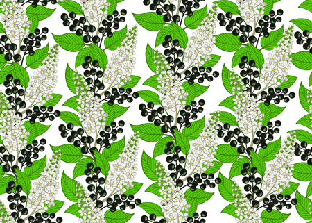 seamless bird cherry pattern. berry and floral background. Çizim