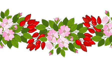 seamless rose hip ornament. A pattern of berries and flowers dog-rose. vector