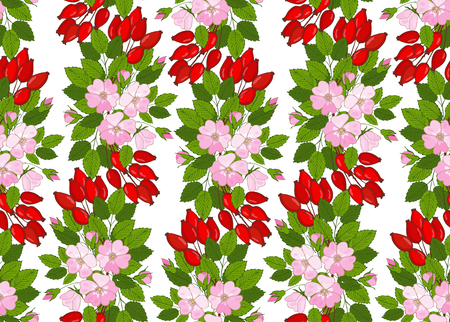 seamless pattern with flowers and berries dogrose. Floral background with wild rose. Vector eglantine ornament Çizim