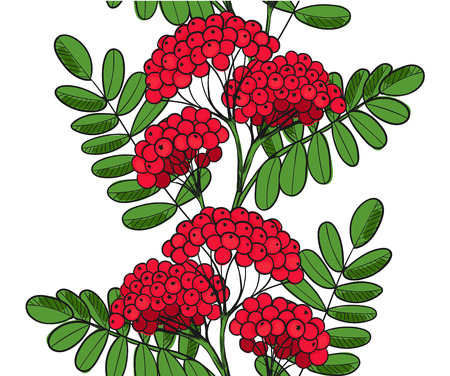 Seamless pattern Red Rowan Tree. Endless ornament twig of rowanberry or ashberry.