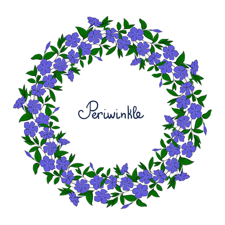 Garland with blue periwinkle flowers. Element for design wreath vinca, catharanthus blossom pattern.