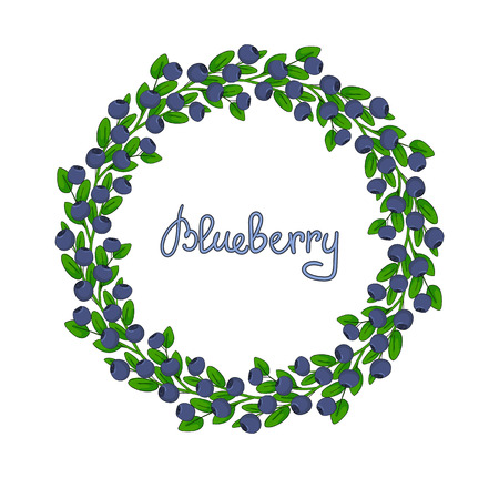 A wreath of blueberries, ornament leaves and berries of bilberries on a branch. Decorative element forest plant huckleberry. Isolated garland of twig whortleberry or blueberry.