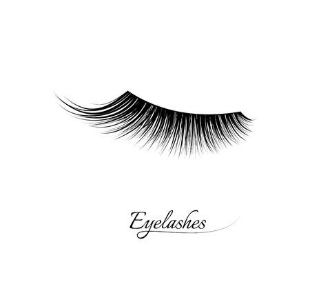 Extension de cils. Beaux cils longs noirs. Oeil fermé. Faux cils de beauté. Mascara effet naturel. Maquillage glamour professionnel.