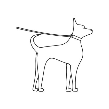 dog side view linear illustration. Pets and grooming. puppy on a leash