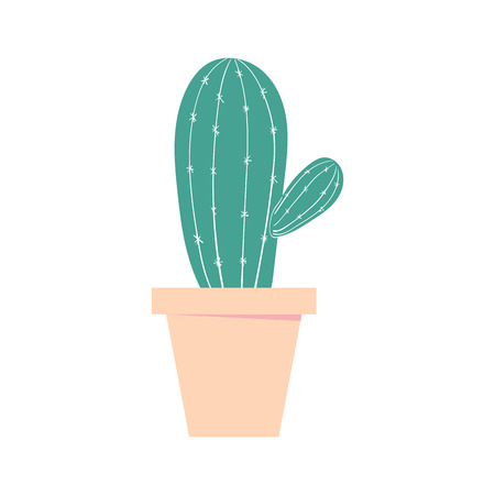 Cactus pot. Home cute plant. Isolated color vector illustration.