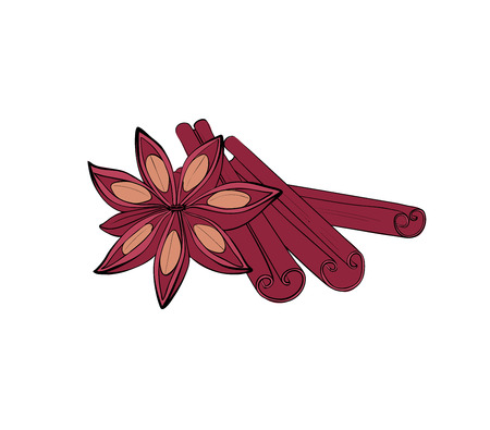 Cinnamon stick and fruit. Isolated Spices for baking. Vector